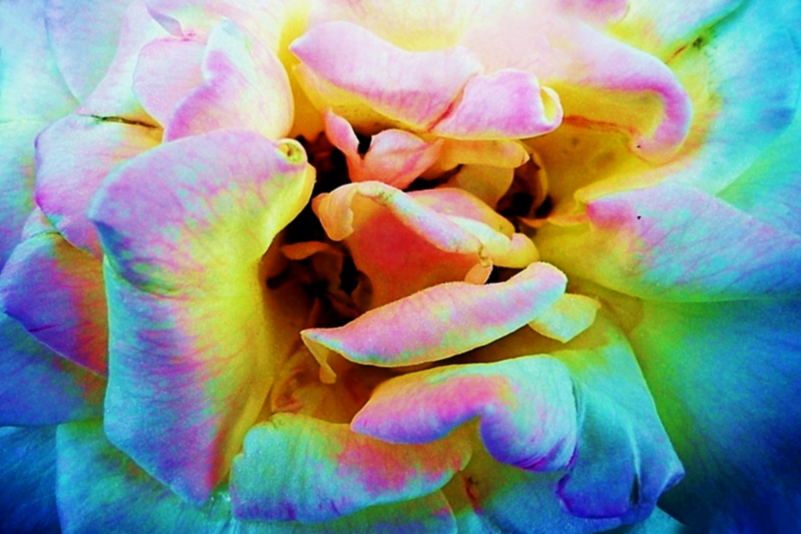 Abstract Photograph: 'I held your softness deep inside of my heart' by artist and photographer John Russell
