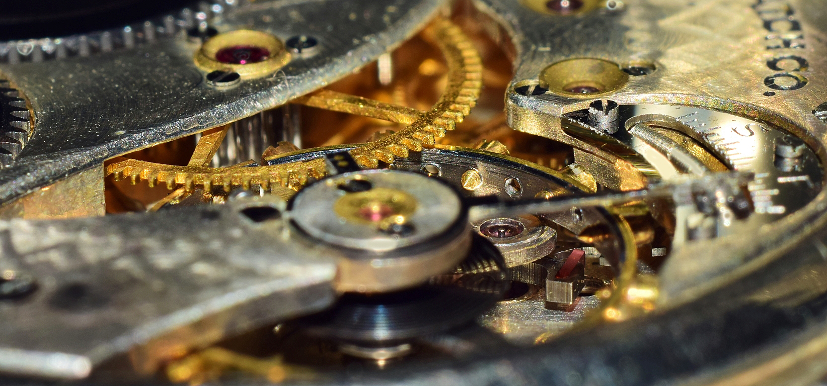 Macro Photograph: 'Legacy of the Time Grinders' by artist and photographer John Russell